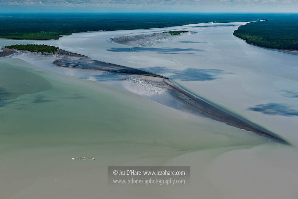 A pod of Pelicans, Aikwa river estuary, Kabupaten Mimika, Papua, Indonesia.