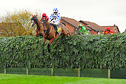 Hello Bud and Sam Twiston-Davies win the Becher Chase at Aintree in November 2010.