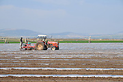 Israel, Beit Shean Valley Kibbutz farming