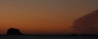 Gannet (Morus bassanus) Colony, Bass Rock at Dawn, Firth of Forth, Scotland