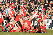 Twickenham, GREAT BRITAIN, Gloucesters' Rory LAWSON, clears the ball rom he back of the scrum, during the Guinness Premiership match,  Harlequins vs GloucesterRugby, at The Stoop Stadium, Surrey on Sat. 21.02.2009.  [Photo. Peter Spurrier/Intersport-images]