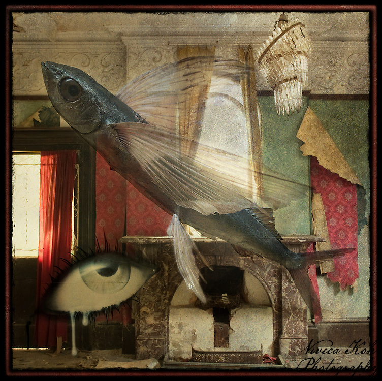 Flying fish and eye in abandoned manor house