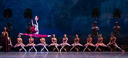 La Bayadere <br /> A ballet in three acts <br /> Choreography by Natalia Makarova <br /> After Marius Petipa <br /> The Royal Ballet <br /> At The Royal Opera House, Covent Garden, London, Great Britain <br /> General Rehearsal <br /> 30th October 2018 <br /> <br /> STRICT EMBARGO ON PICTURES UNTIL 2230HRS ON THURSDAY 1ST NOVEMBER 2018 <br /> <br /> Marianela Nunez as Nikiya <br /> A Bayadere and a temple dancer <br /> <br /> <br /> <br /> Photograph by Elliott Franks Royal Ballet's Live Cinema Season - La Bayadere is being screened in cinemas around the world on Tuesday 13th November 2018 <br /> --------------------------------------------------------------------