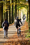 Bij Woudenberg wijkt een mountainbiker uit voor een voetganger in het bos op een mooie herfstdag.<br /> <br /> Near Woudenberg a mountainbiker passes a pedestrian in the woods on a nice autumn day.