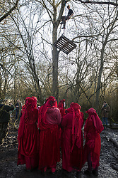 Harefield, UK. 18 January, 2020. The Red Rebel Brigade observes an earth protector pulling a pallet up a tree after activists from Extinction Rebellion, Stop HS2 and Save the Colne Valley reoccupied the Harvil Road wildlife protection camp on the second day of a three-day 'Stand for the Trees' protest in the Colne Valley timed to coincide with tree felling work by HS2. Bailiffs acting for HS2 had evicted all but two activists from the camp the previous week. 108 ancient woodlands are set to be destroyed by the high-speed rail link.