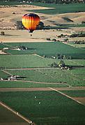 Hot Air Balloon above the Napa Valley, California.