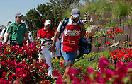 2016 HSBC Abu Dhabi Championship