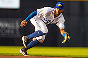 Amarillo Sod Poodles outfielder Rodrigo Orozco (1) fields a ground ball against the Tulsa Drillers on Friday, June 14, 2019, at HODGETOWN in Amarillo, Texas. [Photo by John Moore/Amarillo Sod Poodles]