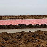 Africa, Namibia, Walvis Bay. Salt Pan Refinery.