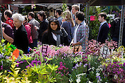 Crowds walk past fresh plants in Columbia Street flower market, in north London.
