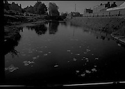 Views of Grand Canal.28/10/1968