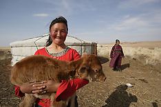 Mongolia UNICEF
