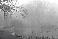 Black and white winter image of Glasgow's Queen's Park