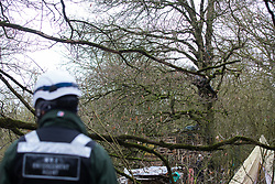 Harefield, UK. 14 January, 2020. A Stop HS2 activist takes refuge in a tree as enforcement agents working on behalf of HS2 attempt to evict activists from a protection camp close to Harvil Road. Part of the nearby Colne Valley protection camp was evicted by bailiffs last week. 108 ancient woodlands are set to be destroyed by the high-speed rail link and further destruction of trees for HS2 in the Harvil Road area is believed to be imminent.