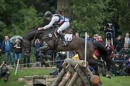 TARASTRO ridden by Regis Prud Hon taking part in the Equitrek CCI*** cross country on day three of the Bramham International Horse Trials 2017 at Bramham Park, Bramham, United Kingdom on 11 June 2017. Photo by Mark P Doherty.