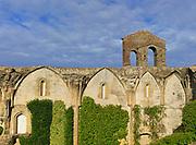 Ruined buildings Museo de la Coria museum, medieval town of Trujillo, Caceres province, Extremadura, Spain