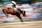A little blur action for the fast moving rodeo. Missoula Photographer, Missoula Photographers, Montana Pictures, Montana Photos, Photos of Montana