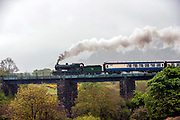 """Engine 461 steams uphill over  """"Quagmire Viaduct' at Barraduff in County kerry on Sunday pulling several carriages of tourists bound for Cork. The train was part of the Railway Preservation Society of Ireland's 46th Irish Railway Heritage Weekend and took in Belfast, Cobh, Cork, Dublin, Killarney, Midleton and Whitehead.<br /> Featuring Picture by Don MacMonage"""
