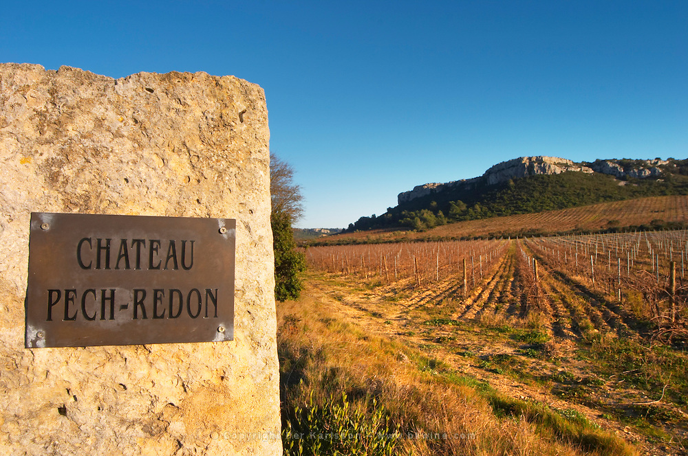 Chateau Pech-Redon. La Clape. Languedoc. France. Europe. Vineyard.