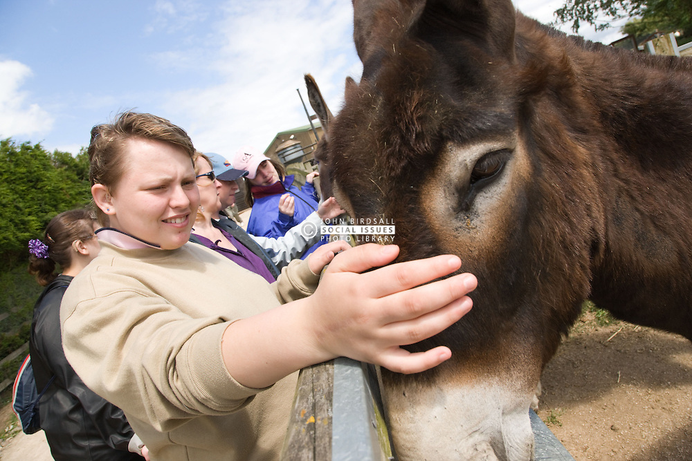 Young woman with learning disabilities on a trip to an animal centre stroking a donkey,