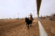 Will James Roundup, Ranch Rodeo, Big Loop, Hardin, Montana, Dwight Hill, MODEL RELEASED, PROPERTY RELEASED rider & horse only