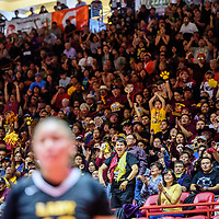 Tohatchi Cougar fans cheer after a successful free throw during the District 3A championship game at The Pit in Albuquerque May, 9.