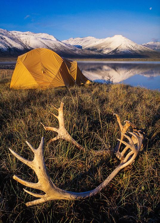 Pingo Lake campsite,  morning light, August, Noatak River Valley, Gates of the Arctic National Park Alaska, USA