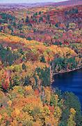 Autumn colours, Bald Coot Lake, Canada