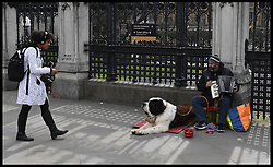 April 17, 2018 - London, London, United Kingdom - Westminster Busker. A busker outside the House of commons  (Credit Image: © Andrew Parsons/i-Images via ZUMA Press)