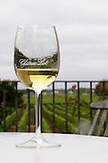 Wine glasses. Chateau Liot, Barsac, Sauternes, Bordeaux, France