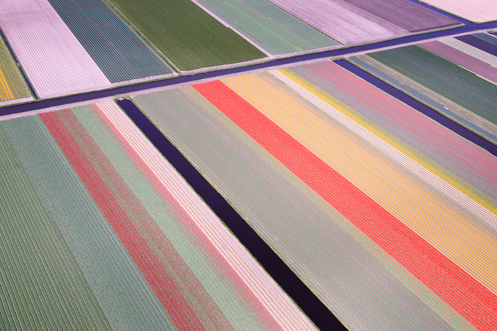 Nederland, Zuid-Holland, Bollenstreek, 09-04-2014; Bloembollenvelden tussen Noordwijkerhout, Lisse en Sassenheim.<br /> Door de extreem zachte winter staan bollenvelden begin april 2014 al in bloei. <br /> [beeld is geretoucheerd]<br /> Dutch pride in the spring: the tulip fields in Lisse and environment.<br /> Due to the extremely mild winter, the bulbs are already in bloom in early April 2014<br /> [photo has been retouched]<br /> luchtfoto (toeslag op standard tarieven);<br /> aerial photo (additional fee required);<br /> copyright foto/photo Siebe Swart