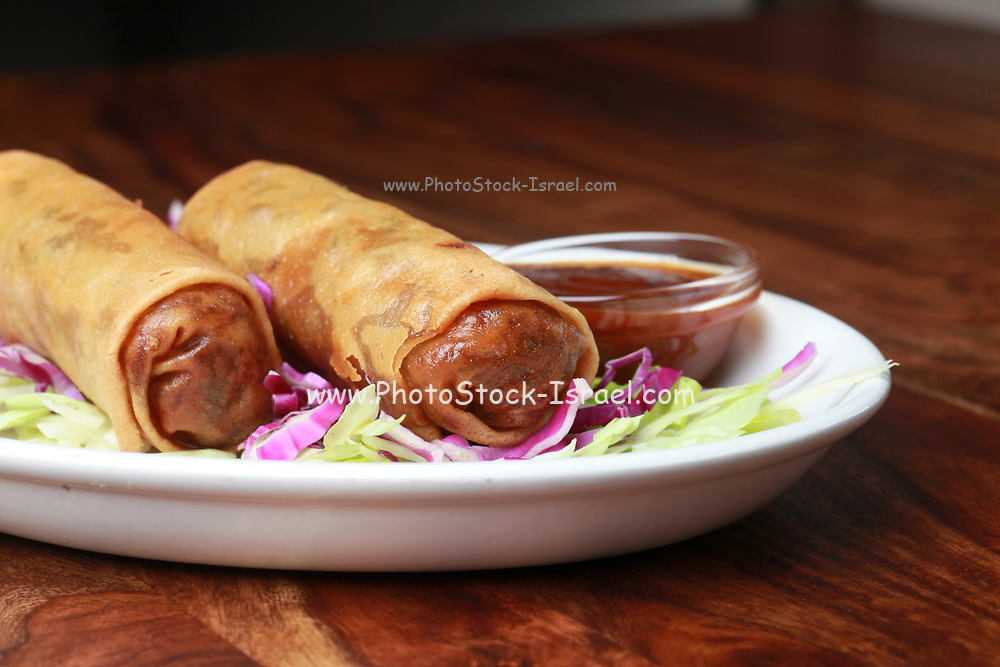 Two Egg rolls in a plate