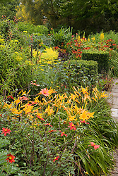Hot colours in the Cottage Garden at Sissinghurst Castle with Hemerocallis 'Burning Dayllight' in the foreground
