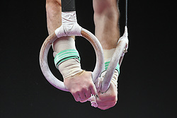 August 18, 2018 - Boston, Massachussetts, U.S - COLIN VANWICKLEN competes on the still rings during the final round of competition held at TD Garden in Boston, Massachusetts. (Credit Image: © Amy Sanderson via ZUMA Wire)