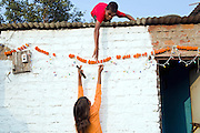 While in the process of combing her hair, Poonam, 11, (bottom) is helping her brother Ravi, 13, to decorate their family's newly built home before the celebrations for Diwali, the Hindu festival of lights, in Oriya Basti, one of the water-contaminated colonies in Bhopal, central India, near the abandoned Union Carbide (now DOW Chemical) industrial complex, site of the infamous '1984 Gas Disaster'.