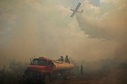 Fire brigade from the Sesc Porto Cercado hotel's private force sit on top of a water truck looking up at an airplane as it drops a load of water onto a fire burning near the hotel in the Pantanal.<br /> In 2020 the Pantanal faced the largest destruction by burning in its history. From January to October, fires burned 4.200.000 hectares of the Pantanal, which corresponds to 28% of the entire biome, killing a vast amount of the region's wildlife.
