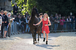 King Emily, (GBR), Brookleigh<br /> CCI4* - Mitsubishi Motors Badminton Horse Trials 2016<br /> © Hippo Foto - Jon Stroud<br /> 06/05/16