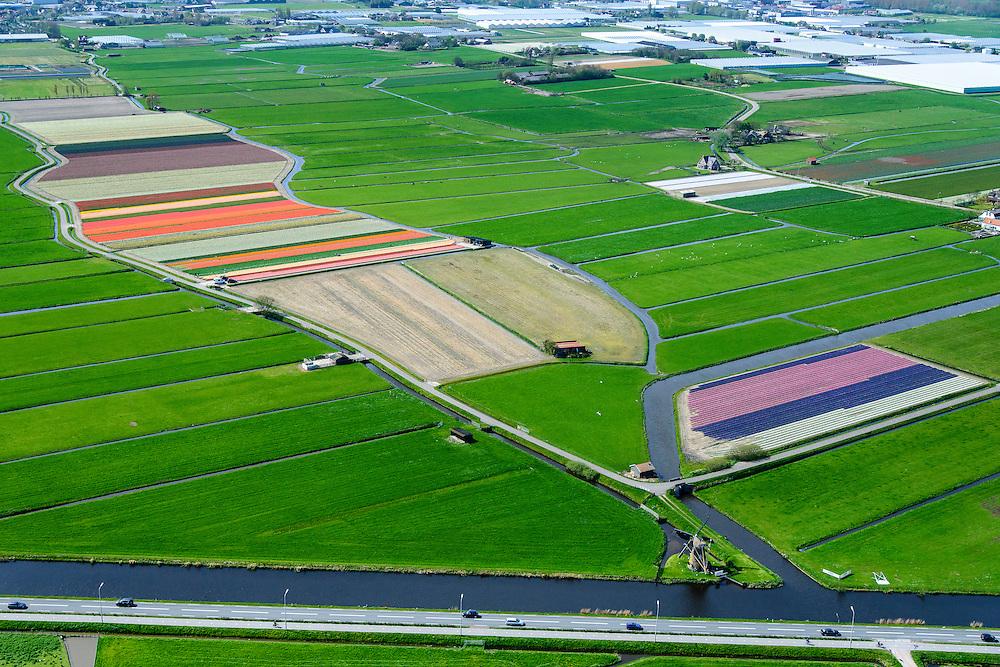 Nederland, Zuid-Holland, Gemeente Teylingen, 09-04-2014; Elsgeesterpolder met watermolen Hoop Doet Leven aan de Leidsevaart. Bloembollenvelden op geestgrond temidden van de weilanden en tuinbouwkassen.<br /> Flowering bulbs in the polder, surrounded by meadows. Polder mill (bottom left) next to the chanal.<br /> luchtfoto (toeslag op standard tarieven)<br /> aerial photo (additional fee required)<br /> copyright foto/photo Siebe Swart
