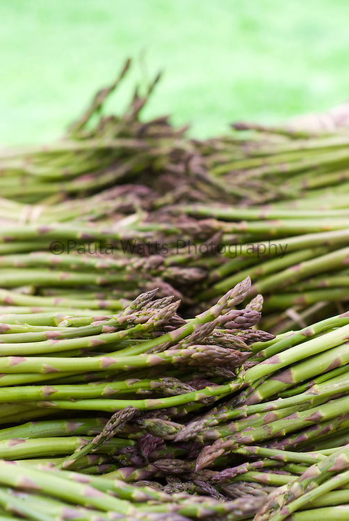Bunches of fresh farmer's market asparagus