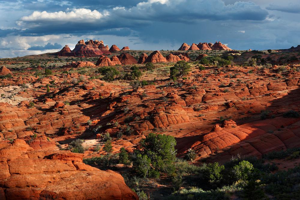 Formaciones de roca arenisca en Vermilion Cliffs National Monument, Arizona (Estados Unidos)