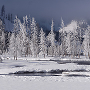 Winter in Yellowstone National Park, Wyoming.