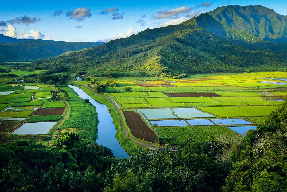 Hanalei Valley lookout on Kauai, Hawaii
