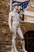 Italy Florence, Piazza della Signoria, The statue of David