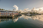 Photographs from Andros, the largest of the islands that make up the Bahamas, in August of 2018.