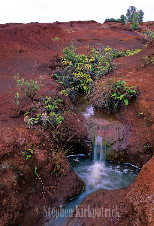 "Red Dirt Desert Stream near the ""Grand Canyon of Hawaii"" - Kauai, Hawaii."