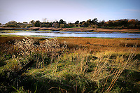 Autumn on the River Yar, Isle of Wight