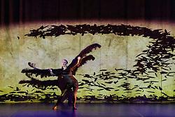 Vuelos is being performed as part of Edinburgh International Festival at Church Hill Theatre from 11-13 August 2017. It is created by Aracaladanza, a dance theatre company from Madrid.  Vuelos draws on Leonardo da Vinci's drawings, paintings and sculptures. <br /> <br /> Dancers included in pictures are Carolina Arija Gallardo, Jimena Trueba Took, Jonaton de Luis Mazagatos, Jorge Brea Salgueiro, Raquel de la Plaza Humera