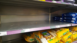© Licensed to London News Pictures. 07/03/2020. London, UK. Morrisons store in London runs out of rice amid an increased number of cases of Coronavirus (COVID-19) in the UK. Forty two more people have tested positive of the virus, taking the total to 206 in the UK. Photo credit: Dinendra Haria/LNP
