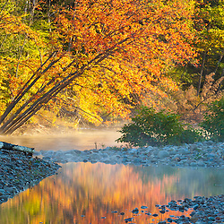 Fall colors reflect in the Saco River in Bartlett, New Hampshire. White Mountains.