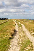Track along top of chalk scarp escarpment slope near Combe Gibbet, Inkpen Hill, Berkshire, England, UK